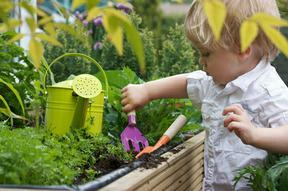 Toddler digging in a greenhouse